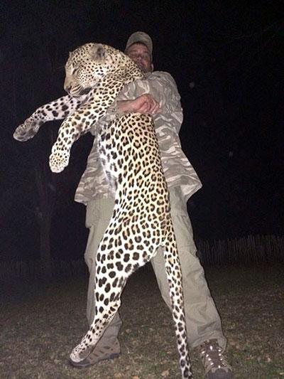 newsletter-38-leopard2