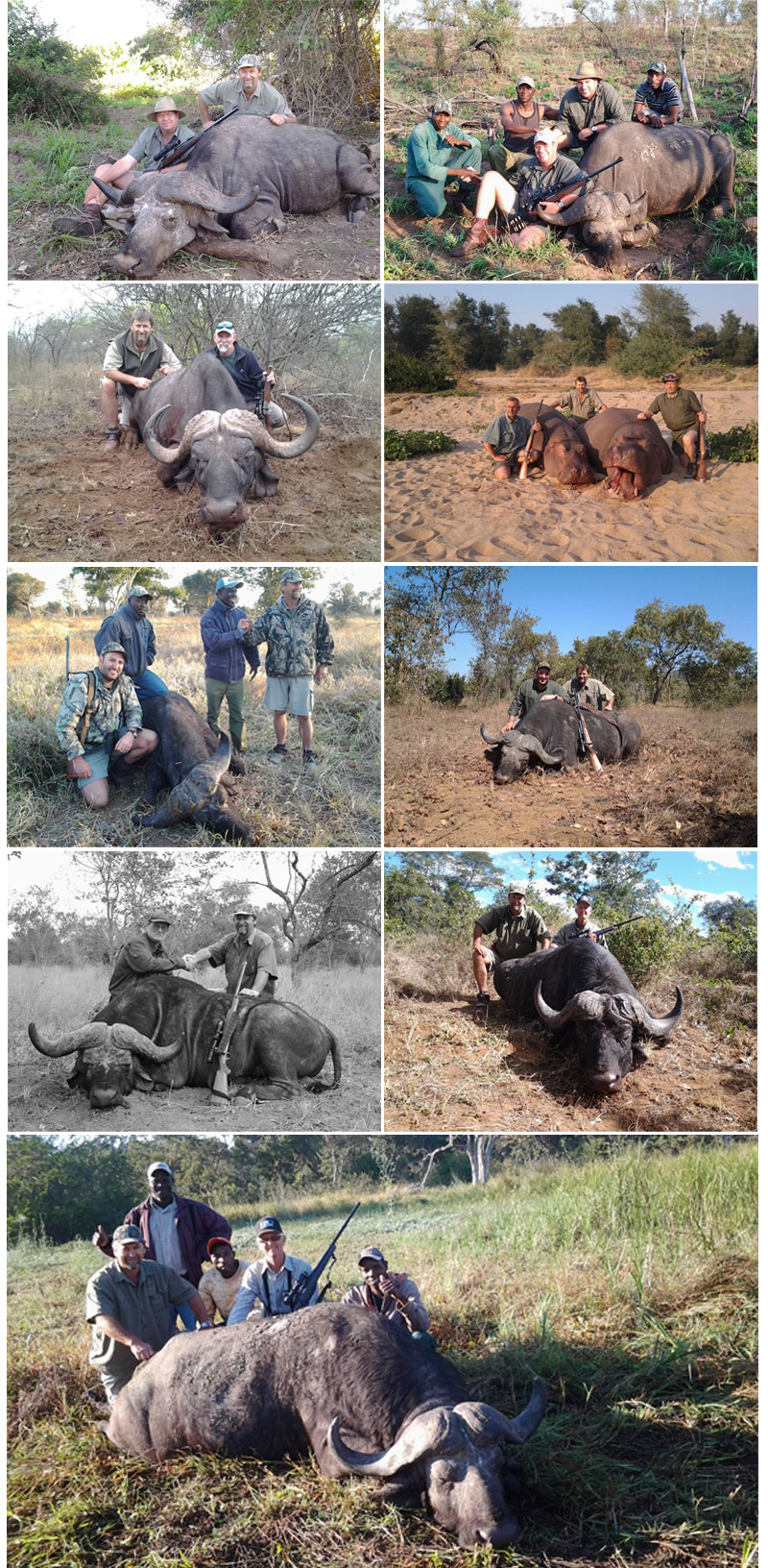newsletter 42 buffalo